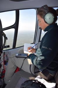 whooping crane aerial survey