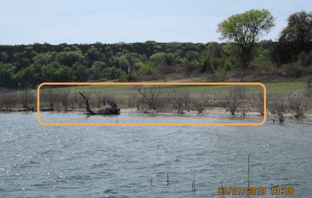 stopover habitat