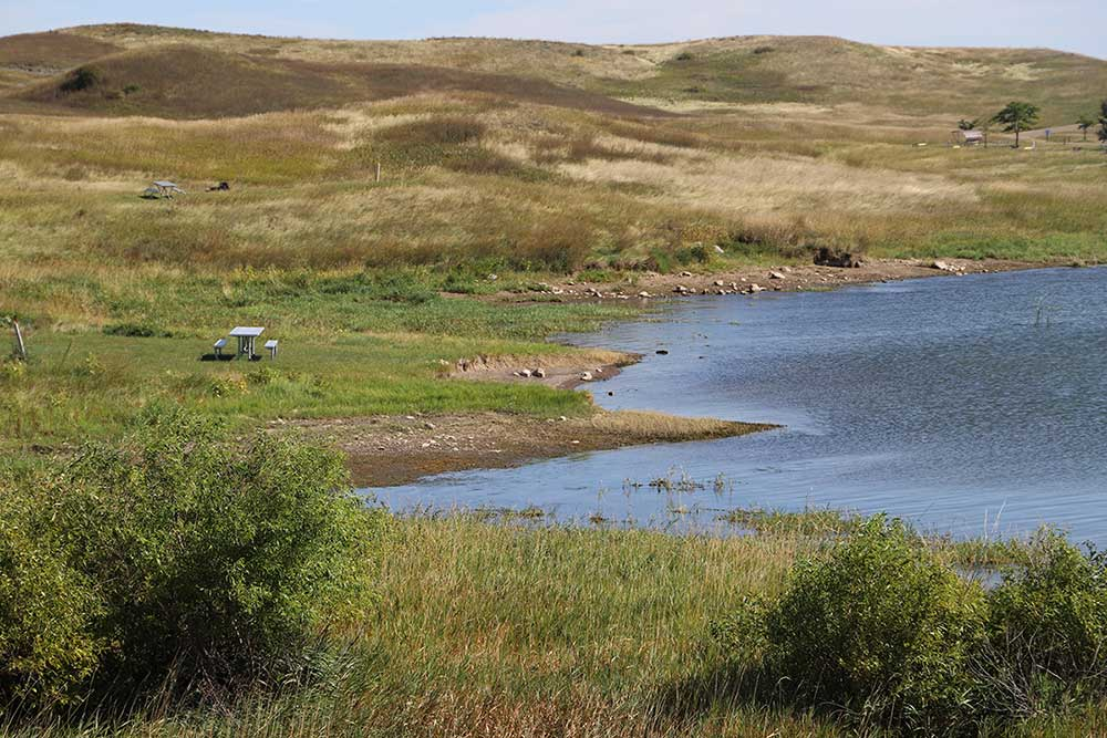 whooping crane stopover habitat