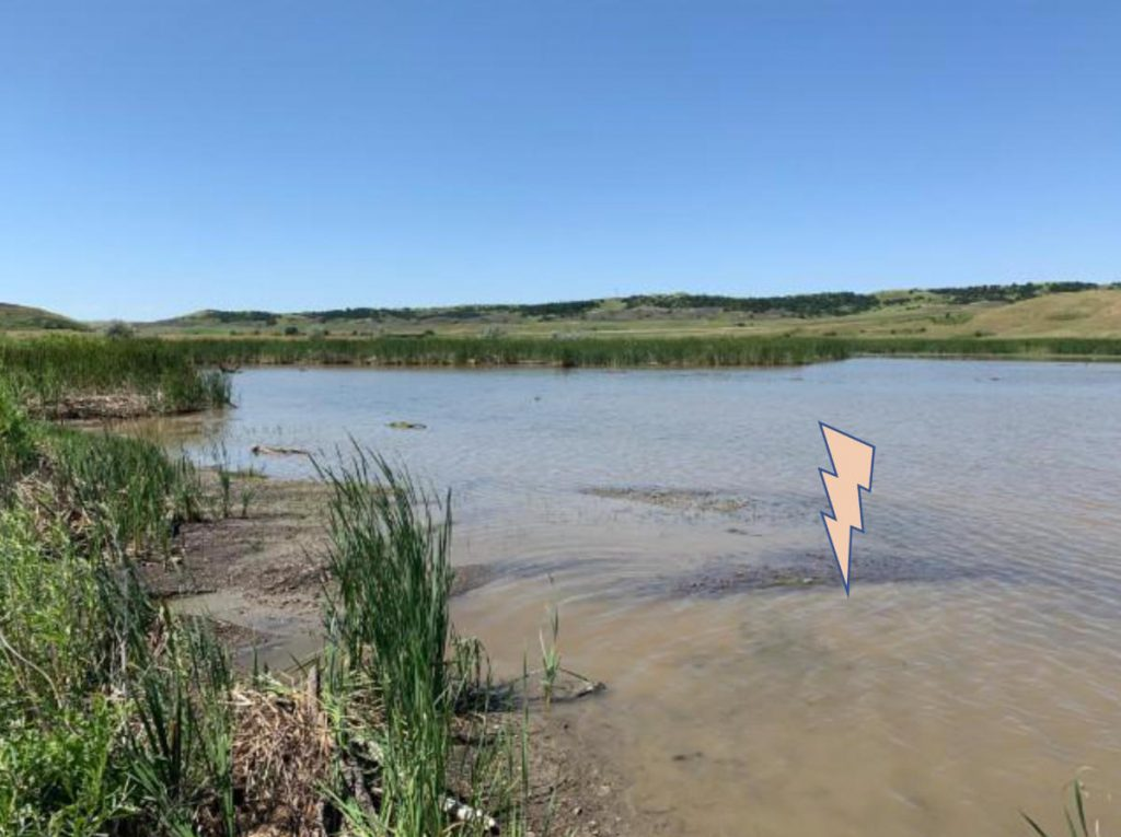 Lake Sharpe